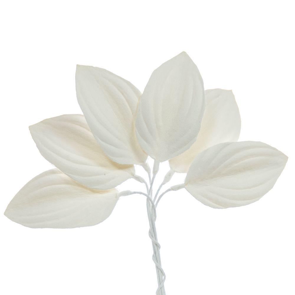 005-OFF WHITE