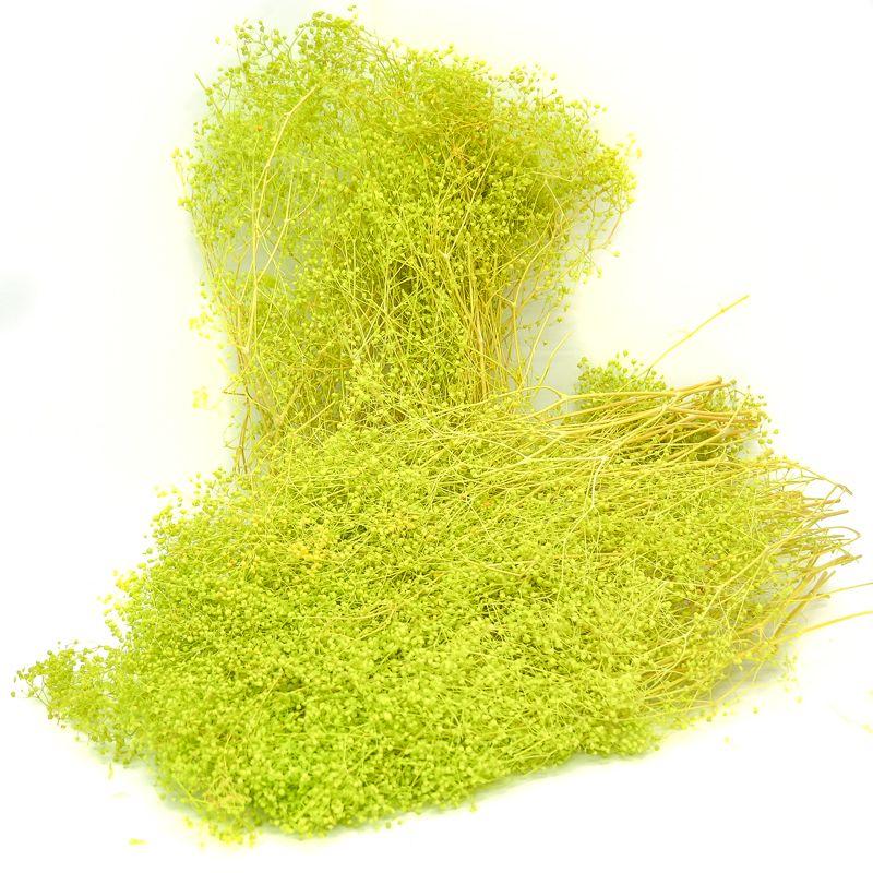 193-LIMA GREEN