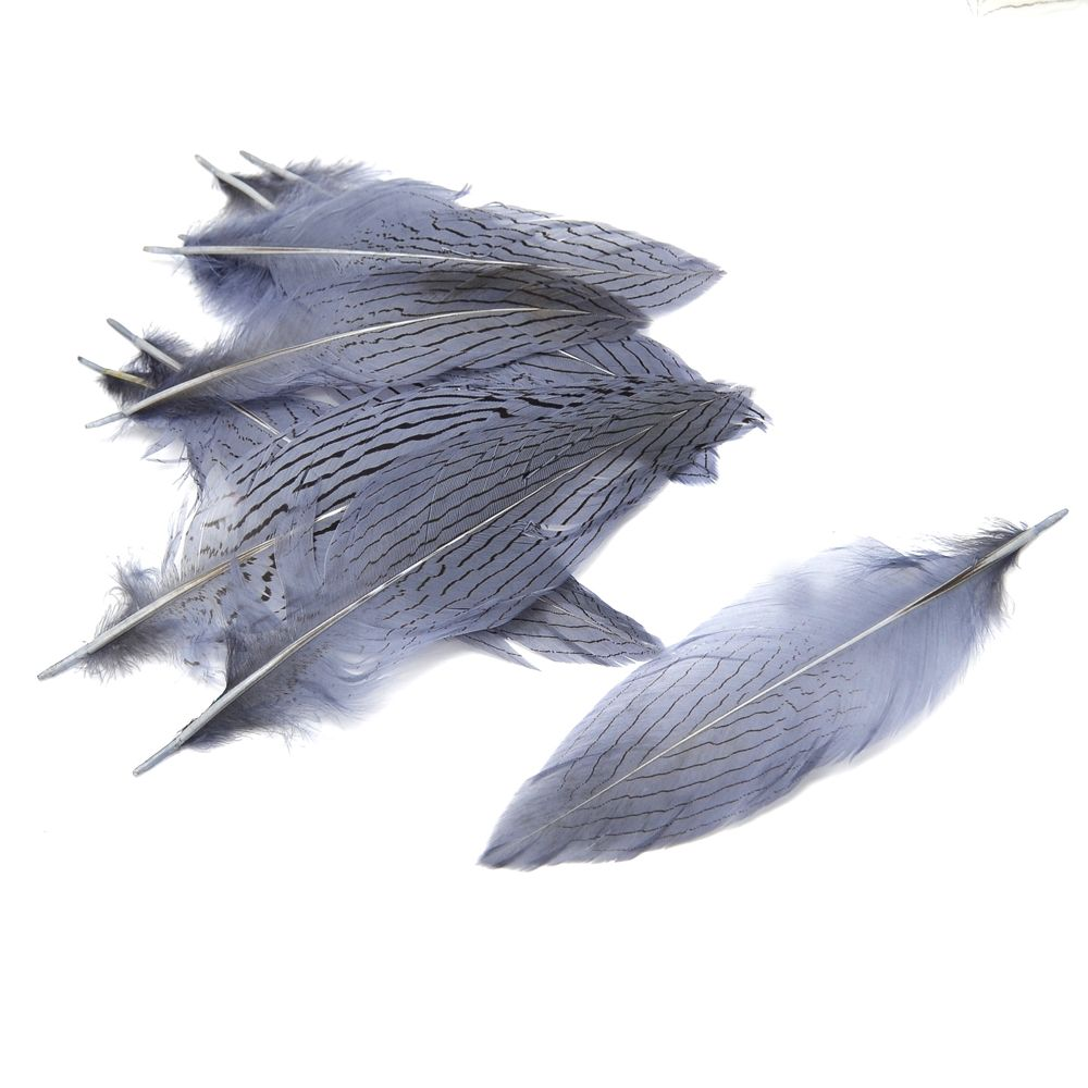 012-GRIS PLATA
