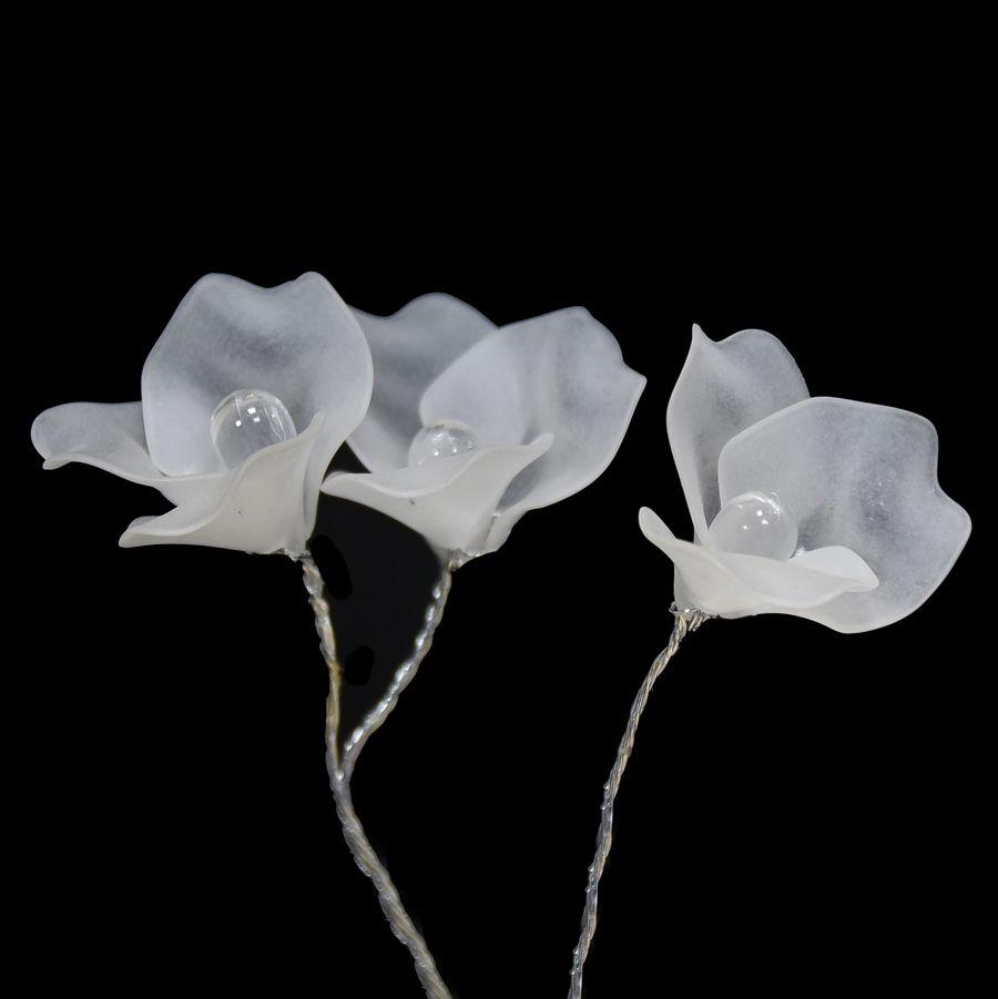 002-WHITE